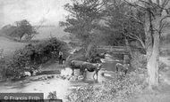 Trefriw, Mountain Stream c1890