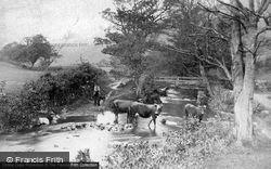 Trefriw, Mountain Stream c.1890
