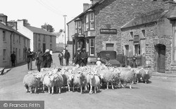 Tregaron, Sheep In The Village On Market Day 1933
