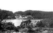Example photo of Trelissick