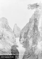Trevone, Tregudda Gorge c.1880