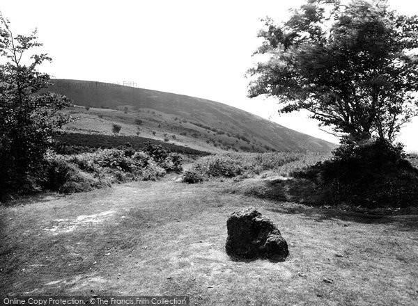 Crowcombe, Triscombe Stone 1929