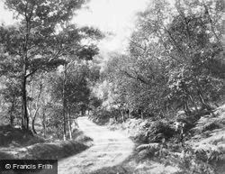 'where Twines The Path' c.1930, Trossachs