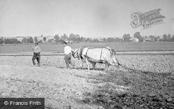Ploughing c.1938, Troyes