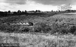 Tunstall, Orchards c.1960