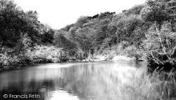 Ladygrove Dam c.1960, Two Dales