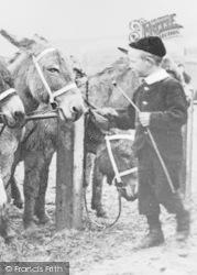 Boy And Donkey c.1910, Tynemouth