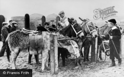 Donkeys On The Beach c.1910, Tynemouth