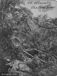 Ullswater, Aira Force Bridge c.1875