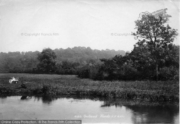 Photo of Unstead, Woods 1898