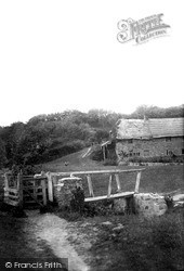 Uplyme, The Old Mill c.1900