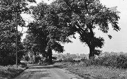Upminster, Hall Lane c.1950
