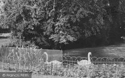 Upminster, Library Gardens c.1955