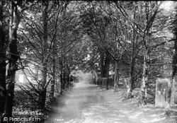 Upminster, Yew Avenue 1908