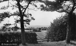 Upper Dicker, The Downs c.1950