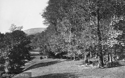 From Steephill Castle c.1876, Ventnor