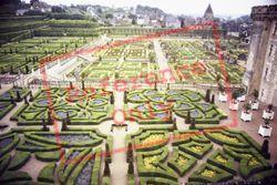 Chateau De Love Gardens 1984, Villandry