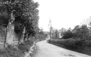 Wadhurst, the Walk 1903