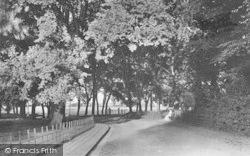 Liverpool Road 1906, Walmer