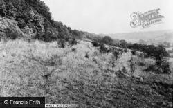 Butterfly Walk c.1960, Warlingham