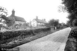 Goose Green 1927, Warnham