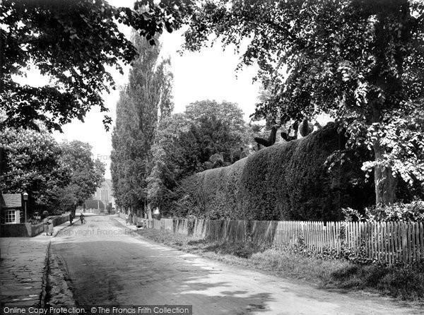 Photo of Warnham, Topiary Work 1928