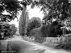 Topiary Work 1928, Warnham