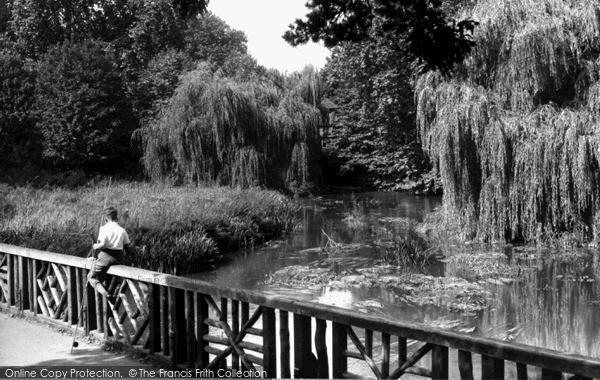 Watford,the Mill, Cassiobury Park c1955,Hertfordshire