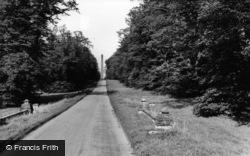 Road To Castle Howard c.1965, Welburn