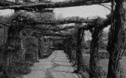 Welling, Rustic Walk, Danson Park c.1955