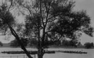 Welling, The Lake, Danson Park c.1950