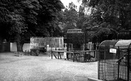 Wellingborough, the Zoo Park c1950