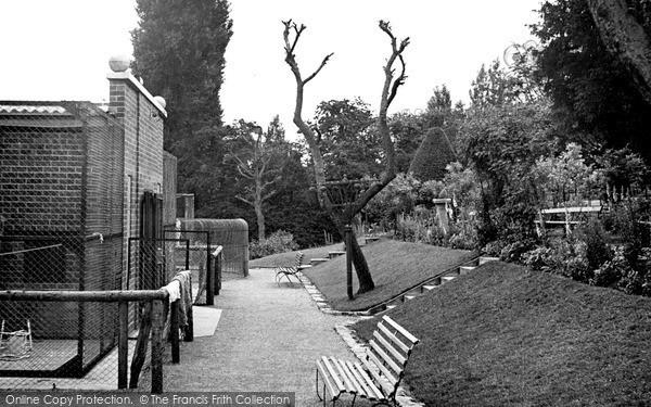Photo of Wellingborough, The Zoo Park c.1950