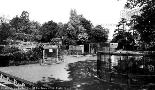 Wellingborough, the Zoo Park c1965