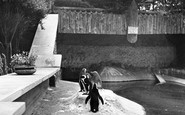 Wellingborough, Zoo Park, the Penguins c1950