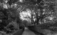 Wellington, Beech Grove 1925