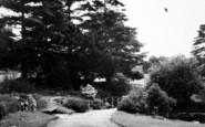 Wellington, Gardens 1963