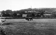 Wellington, General View, Wellington Moument  c.1955