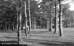 Wells-Next-The-Sea, Pinewoods 1950