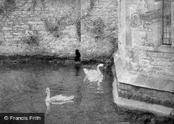Wells, The Swans On The Palace Moat 1906