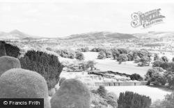 Welshpool, General View c.1960