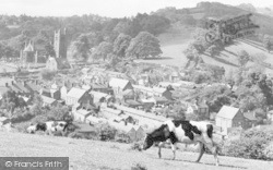 Welshpool, View From Red Bank c.1955