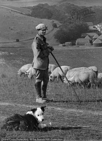 Photo of West Dean, Shepherd And Sheep Dog 1922