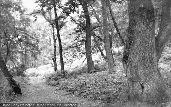 Photo of West Runton, The Woods c.1955