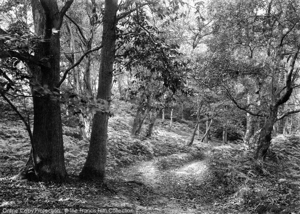 Photo of West Runton, Woods Near The Roman Encampment 1933