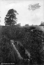 Swinethwaite, Stone Coffin 1911, West Witton