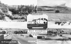 Composite c.1955, West Woodburn