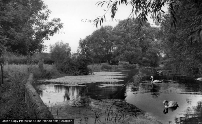 Photo of Westbourne, The Mill Stream c.1955