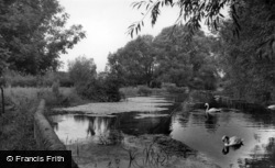 The Mill Stream c.1955, Westbourne