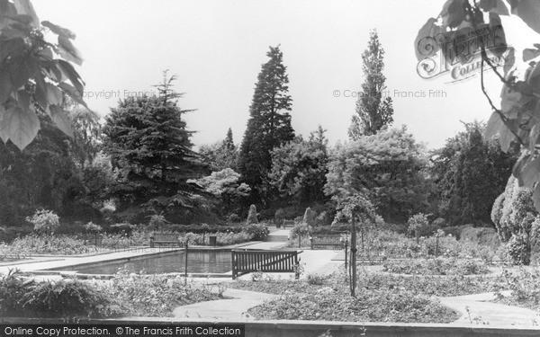 Westbury-On-Trym, the Rose Garden, Canford Park c1968